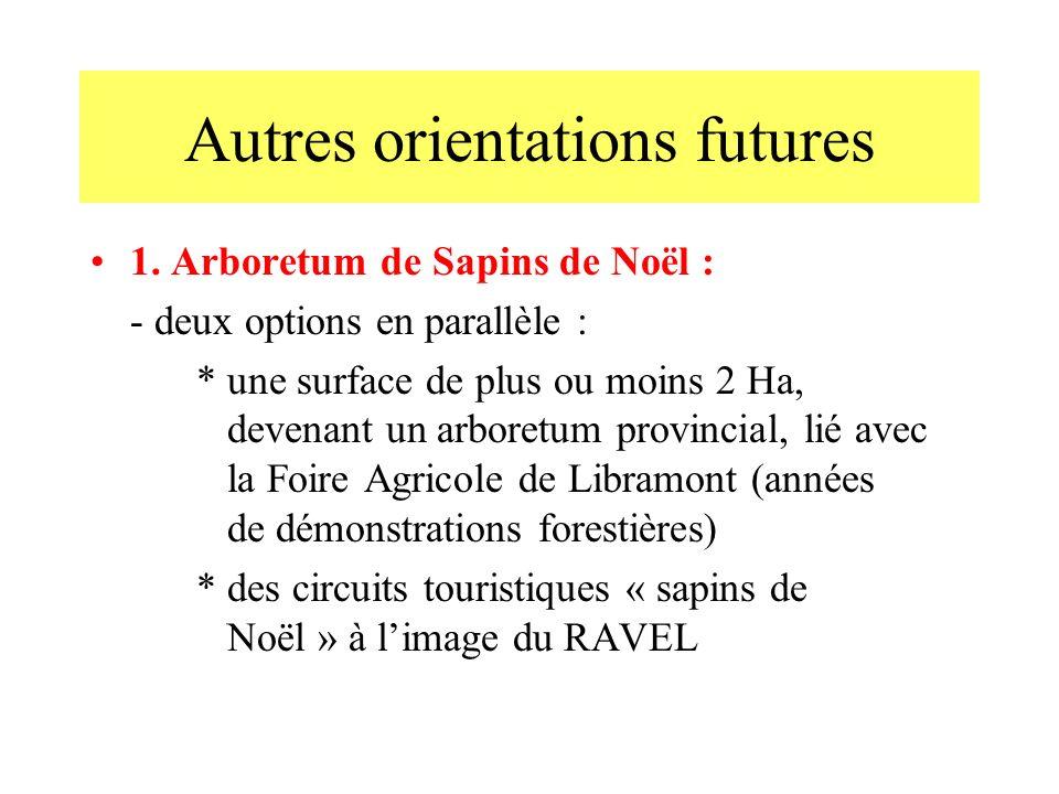 Autres orientations futures 1. Arboretum de Sapins de Noël : - deux options en parallèle : * une surface de plus ou moins 2 Ha, devenant un arboretum
