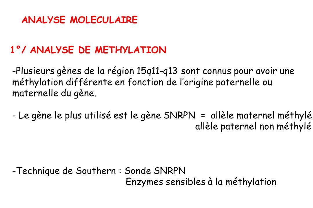 ANALYSE MOLECULAIRE 1°/ ANALYSE DE METHYLATION -Plusieurs gènes de la région 15q11-q13 sont connus pour avoir une méthylation différente en fonction de lorigine paternelle ou maternelle du gène.