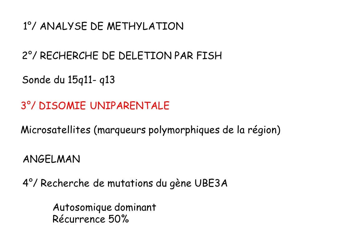 2°/ RECHERCHE DE DELETION PAR FISH Sonde du 15q11- q13 1°/ ANALYSE DE METHYLATION 3°/ DISOMIE UNIPARENTALE Microsatellites (marqueurs polymorphiques de la région) ANGELMAN 4°/ Recherche de mutations du gène UBE3A Autosomique dominant Récurrence 50%