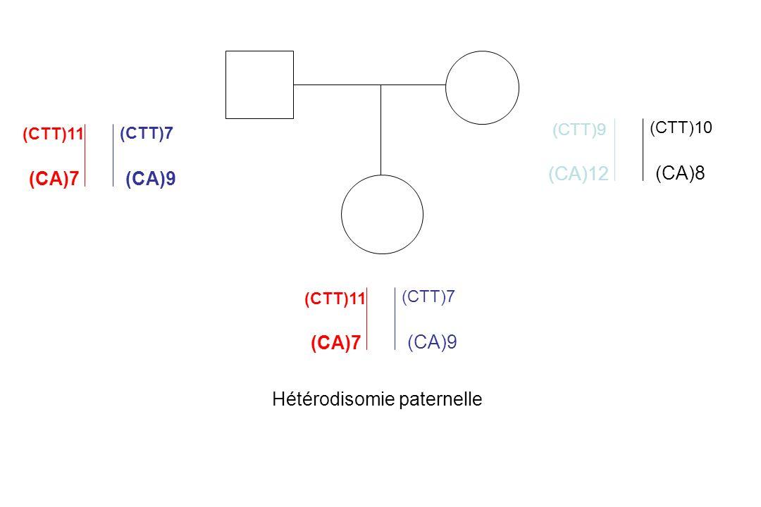 (CTT)11 (CTT)7 (CA)7(CA)9 (CTT)9 (CTT)10 (CA)12 (CA)8 (CTT)11 (CTT)7 (CA)7 (CA)9 Hétérodisomie paternelle