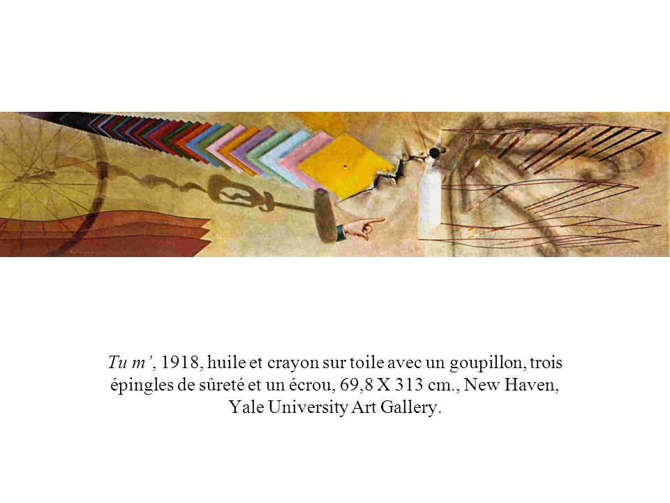 Tu m, 1918, huile et crayon sur toile avec un goupillon, trois épingles de sûreté et un écrou, 69,8 X 313 cm., New Haven, Yale University Art Gallery.