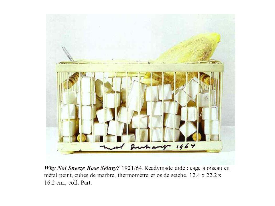 Why Not Sneeze Rose Sélavy? 1921/64. Readymade aidé : cage à oiseau en métal peint, cubes de marbre, thermomètre et os de seiche. 12.4 x 22.2 x 16.2 c
