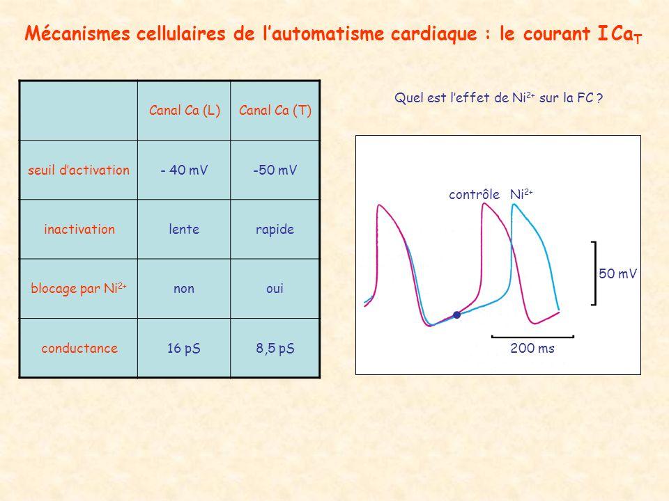 Canal Ca (L)Canal Ca (T) seuil dactivation- 40 mV-50 mV inactivationlenterapide blocage par Ni 2+ nonoui conductance16 pS8,5 pS Quel est leffet de Ni