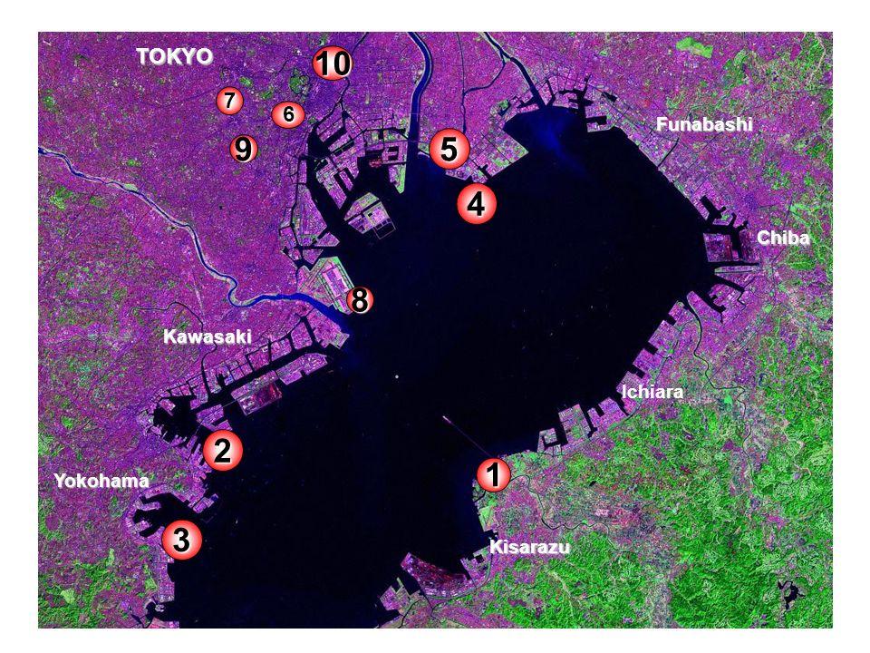 Terre-pleins Centre dense Première couronne en rénovation Quartiers suburbains Montagnes et collines CBD ancien Nouveaux centres Axes de transports Industries Anciens terre-pleins industriels rénovés Schéma du développement de Tokyo