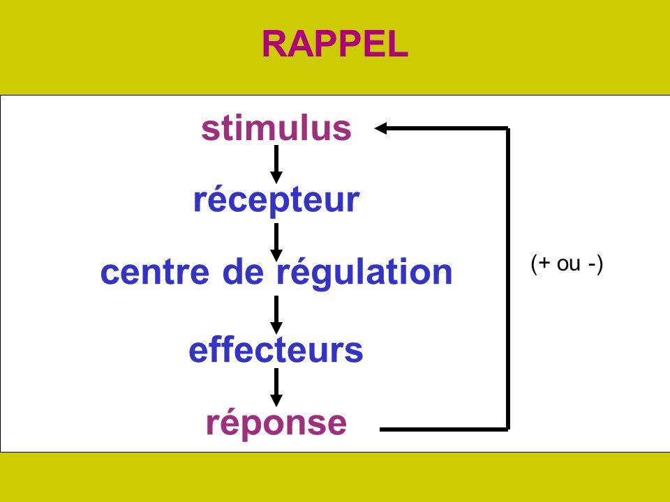RAPPEL stimulus réponse récepteur centre de régulation effecteurs (+ ou -)