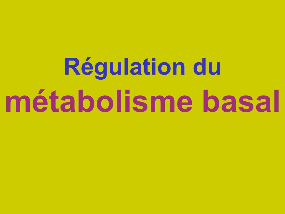 Régulation du métabolisme basal