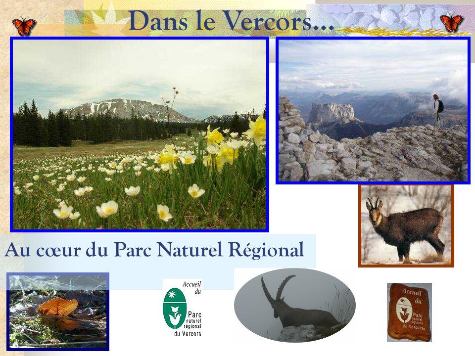 Dans le Vercors… Au cœur du Parc Naturel Régional