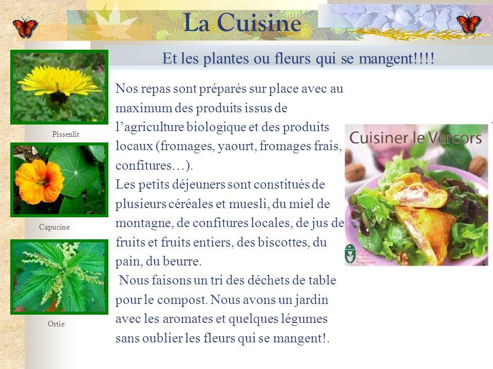 Et les plantes ou fleurs qui se mangent!!!! Capucine Ortie La Cuisine Nos repas sont préparés sur place avec au maximum des produits issus de lagricul