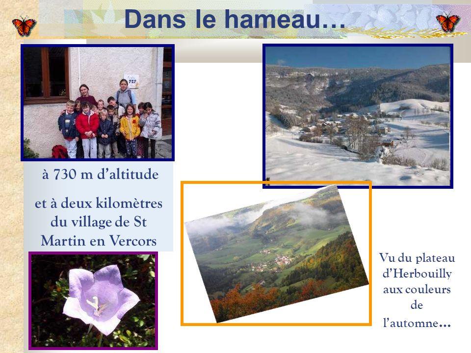 Vu du plateau dHerbouilly aux couleurs de lautomne … à 730 m daltitude et à deux kilomètres du village de St Martin en Vercors Dans le hameau…