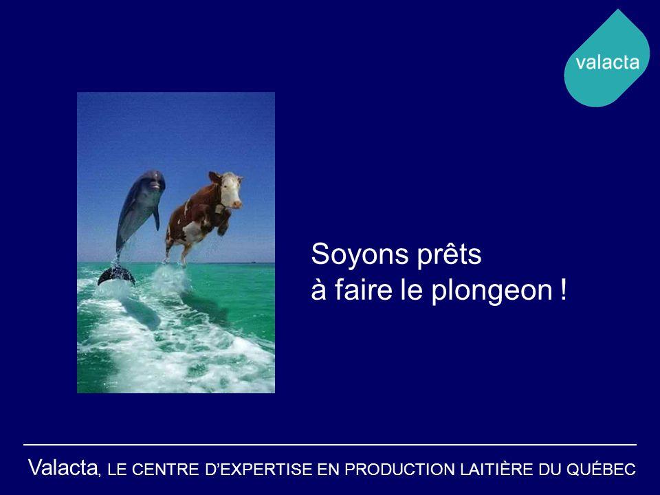 Valacta, LE CENTRE DEXPERTISE EN PRODUCTION LAITIÈRE DU QUÉBEC Soyons prêts à faire le plongeon !