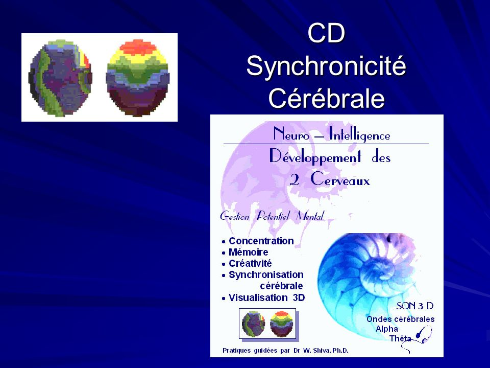 CD Synchronicité Cérébrale