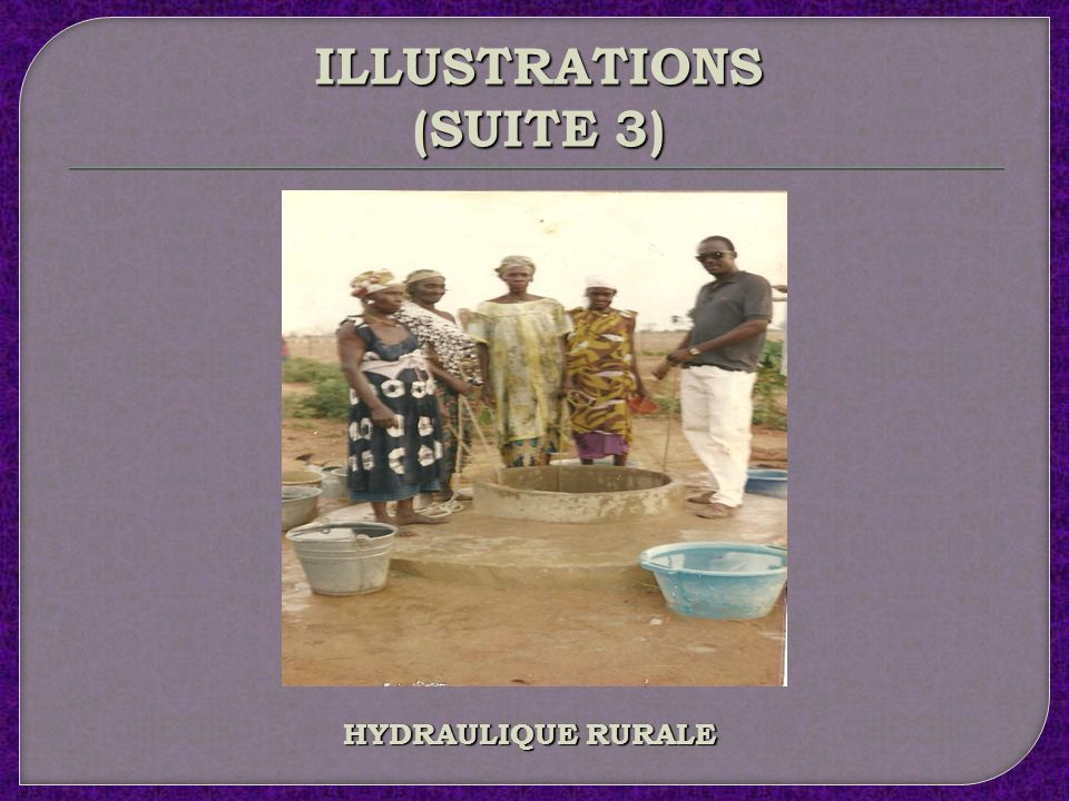 ILLUSTRATIONS (SUITE 2) GRAINES ET FRUITS DU RAPHIA SUDANICA