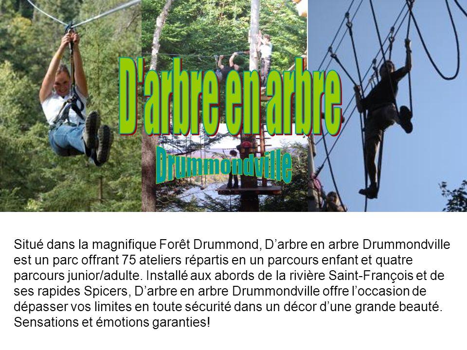 Le Village Québécois dAntan représente le Québec du 19e siècle (1810- 1910). Les animateurs et animatrices costumés vous font participer à la vie quot