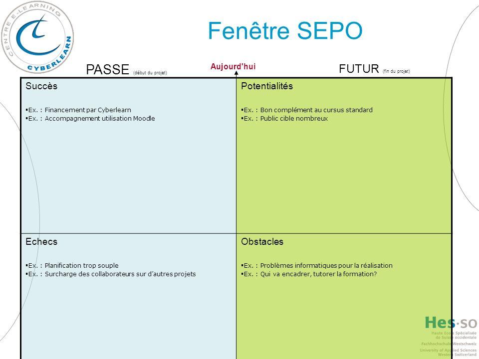 Fenêtre SEPO Succès Ex. : Financement par Cyberlearn Ex. : Accompagnement utilisation Moodle Potentialités Ex. : Bon complément au cursus standard Ex.