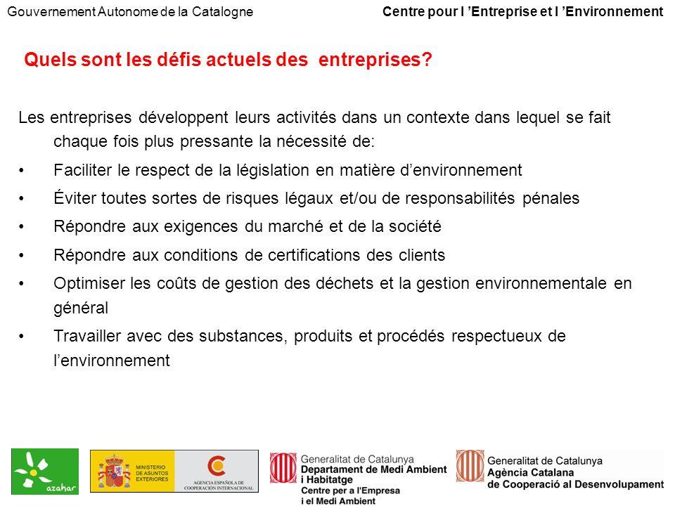 Gouvernement Autonome de la Catalogne Centre pour l Entreprise et l Environnement Quels sont les défis actuels des entreprises.