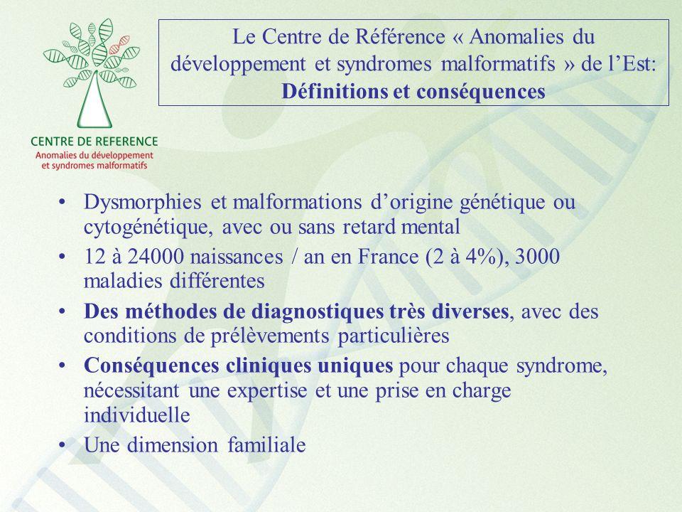 Le Centre de Référence « Anomalies du développement et syndromes malformatifs » de lEst: Définitions et conséquences Dysmorphies et malformations dori