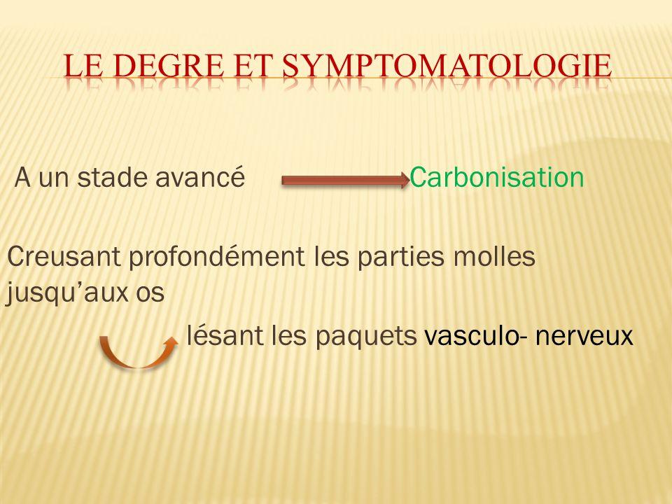 A un stade avancé Carbonisation Creusant profondément les parties molles jusquaux os lésant les paquets vasculo- nerveux