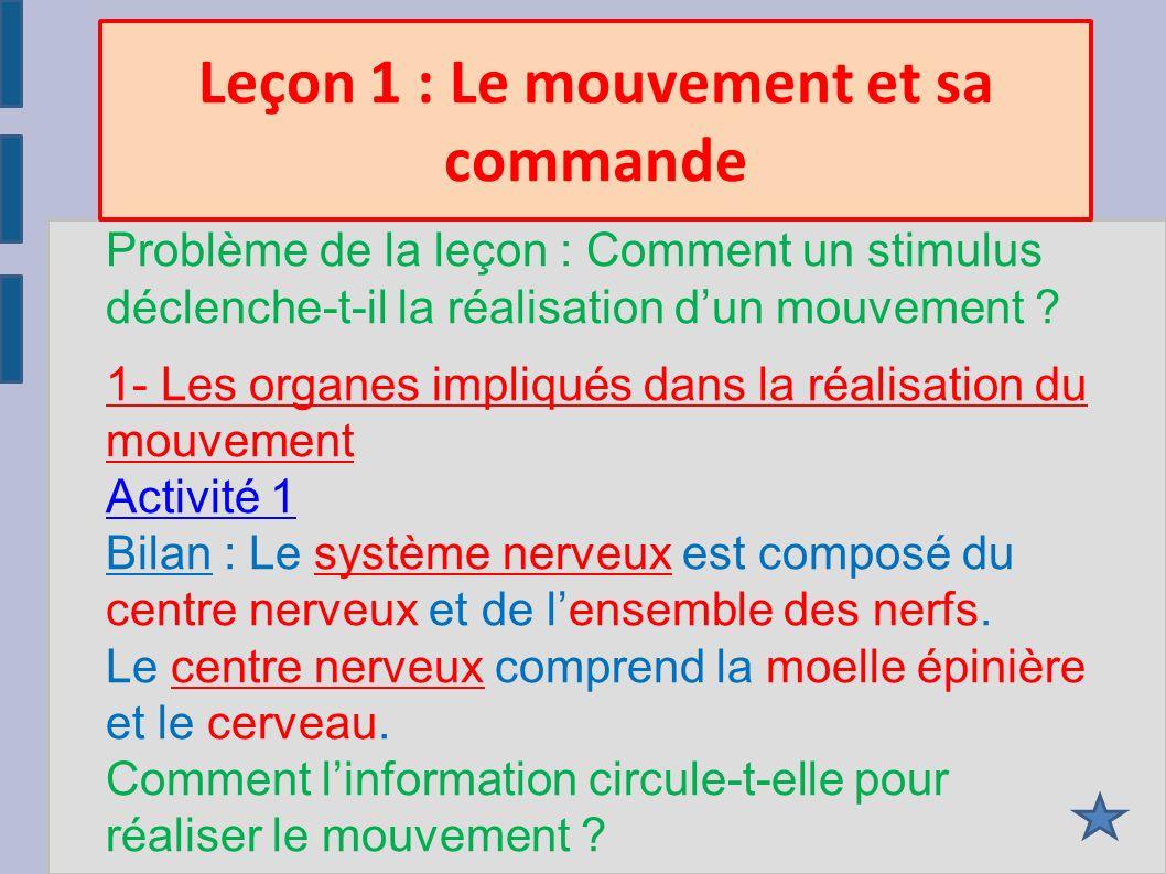 Leçon 1 : Le mouvement et sa commande Problème de la leçon : Comment un stimulus déclenche-t-il la réalisation dun mouvement .