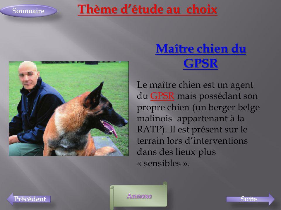 PrécédentSuite Sommaire Thème détude au choix Maître chien du GPSR Le maître chien est un agent du GPSR mais possédant son propre chien (un berger bel