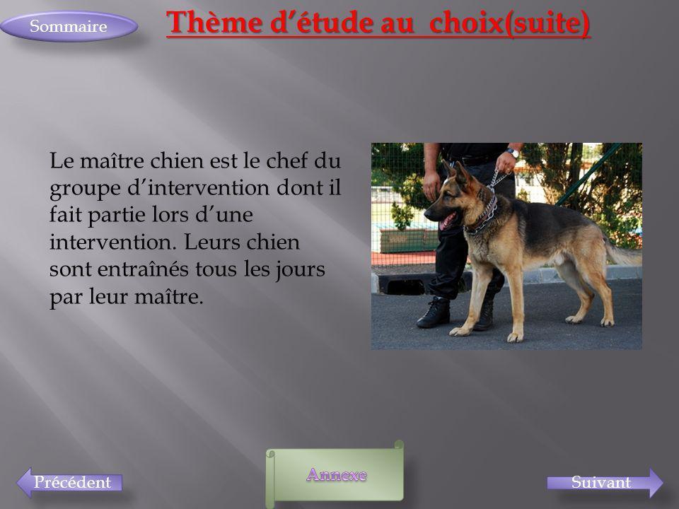 SuivantPrécédent Sommaire Thème détude au choix(suite) Le maître chien est le chef du groupe dintervention dont il fait partie lors dune intervention.
