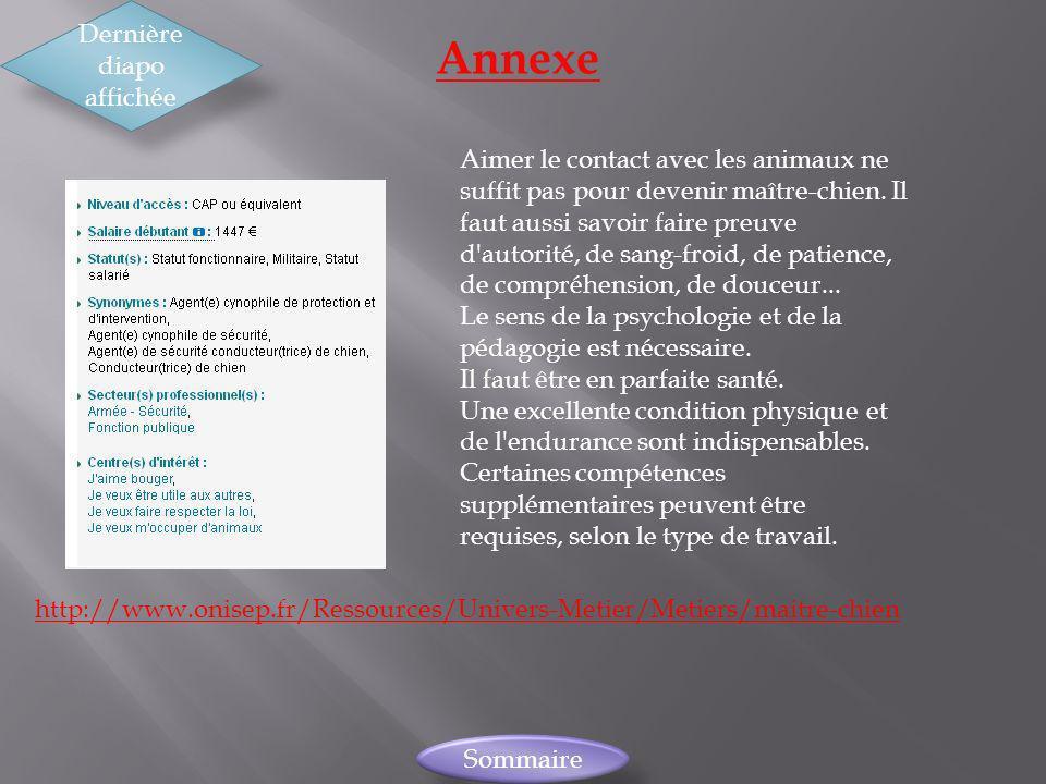 Annexe Dernière diapo affichée Sommaire http://www.onisep.fr/Ressources/Univers-Metier/Metiers/maitre-chien Aimer le contact avec les animaux ne suffi