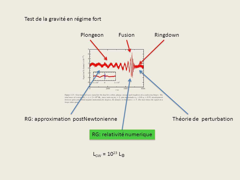 Test de la gravité en régime fort PlongeonFusionRingdown RG: approximation postNewtonienne RG: relativité numerique Théorie de perturbation L GW = 10