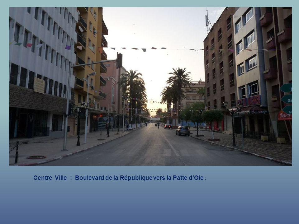 Centre Ville : Rue de la République vers la Patte dOie.