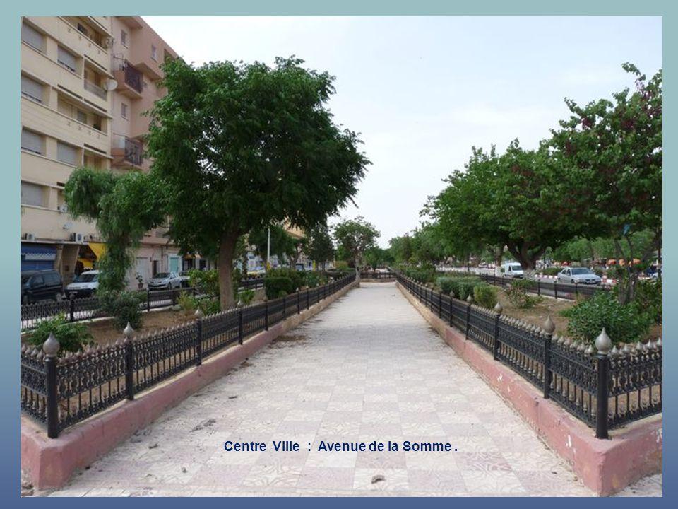 Centre Ville : Subdivision EGA - Avenue de Bir Hakeim et rue Edmond Rostand.