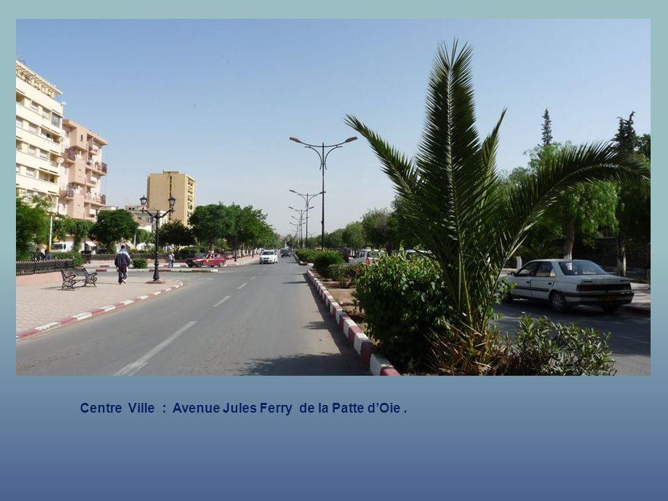 Centre Ville : Avenue Jules Ferry de la Patte dOie.