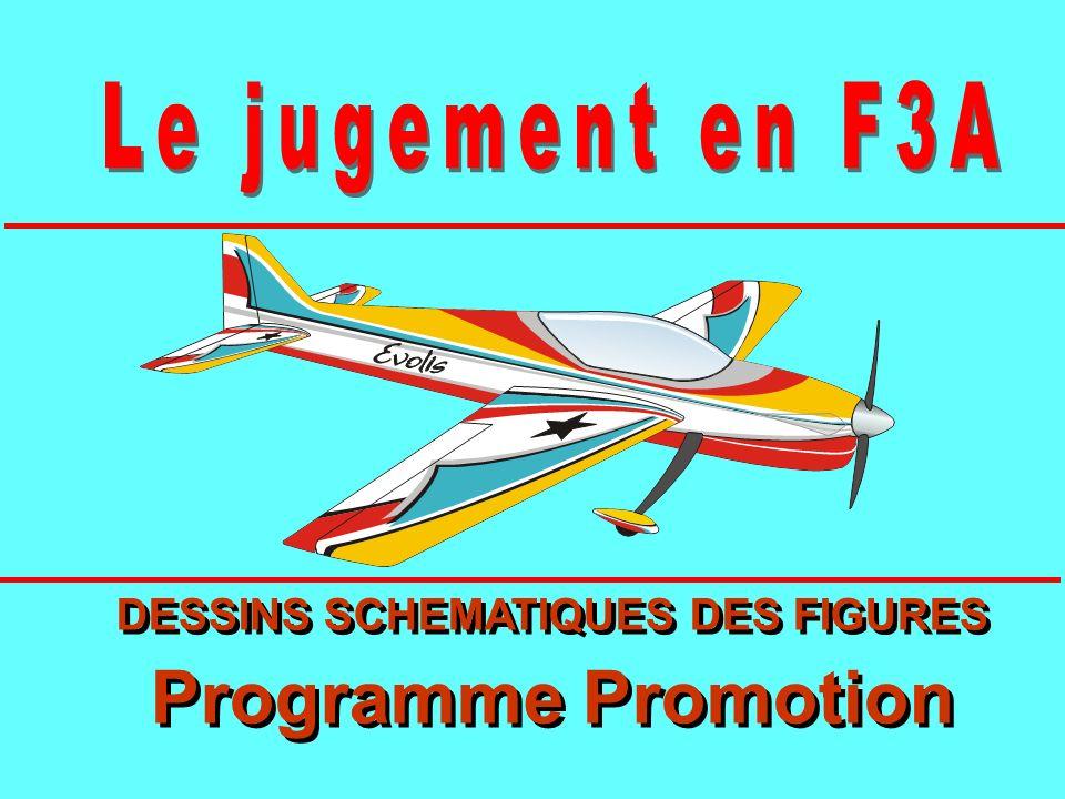 DESSINS SCHEMATIQUES DES FIGURES Programme Promotion DESSINS SCHEMATIQUES DES FIGURES Programme Promotion