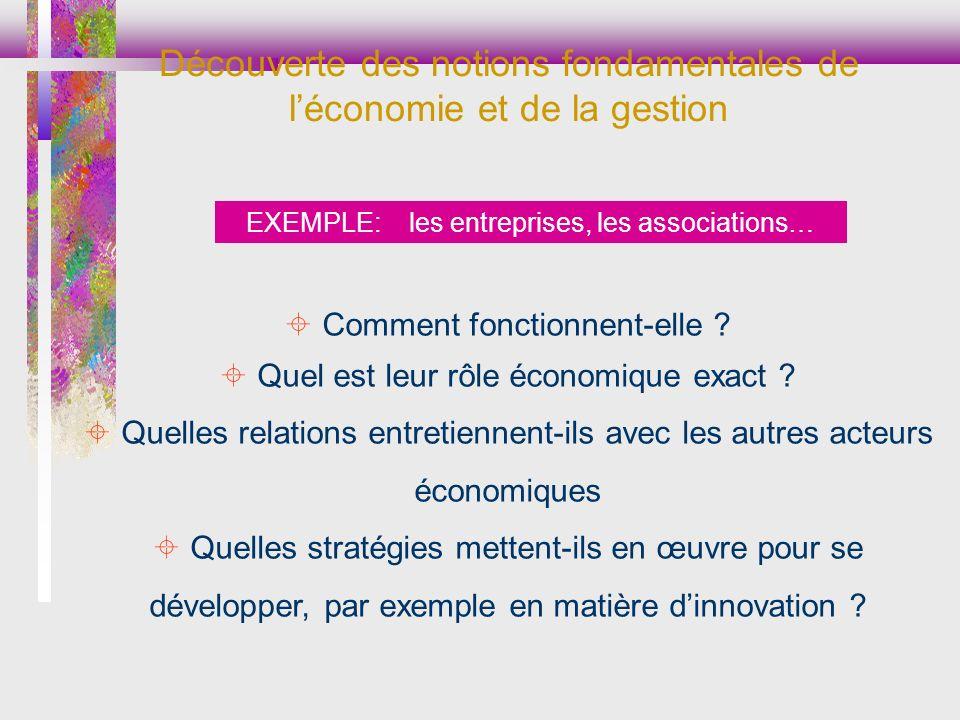 EXEMPLE: les entreprises, les associations… Comment fonctionnent-elle ? Quel est leur rôle économique exact ? Quelles relations entretiennent-ils avec
