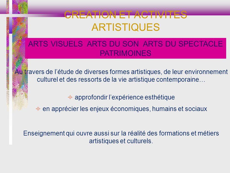Au travers de létude de diverses formes artistiques, de leur environnement culturel et des ressorts de la vie artistique contemporaine… approfondir le