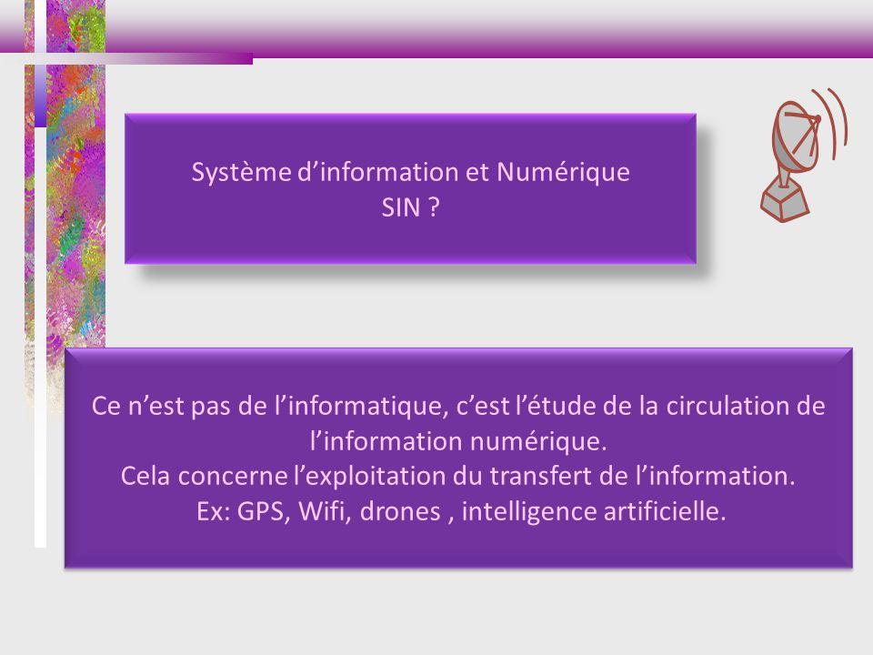 Système dinformation et Numérique SIN ? Ce nest pas de linformatique, cest létude de la circulation de linformation numérique. Cela concerne lexploita