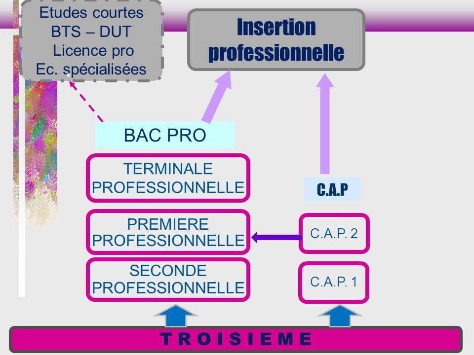 T R O I S I E M E SECONDE PROFESSIONNELLE PREMIERE PROFESSIONNELLE TERMINALE PROFESSIONNELLE BAC PRO C.A.P. 1 C.A.P. 2 C.A.P Etudes courtes BTS – DUT