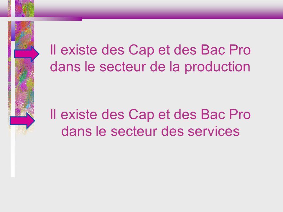 Il existe des Cap et des Bac Pro dans le secteur des services Il existe des Cap et des Bac Pro dans le secteur de la production