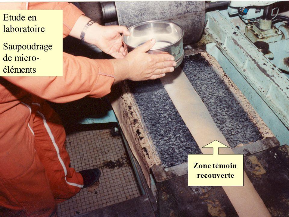 G. DELALANDE - LAUSANNE 17/9/2003 Etude en laboratoire Saupoudrage de micro- éléments Zone témoin recouverte