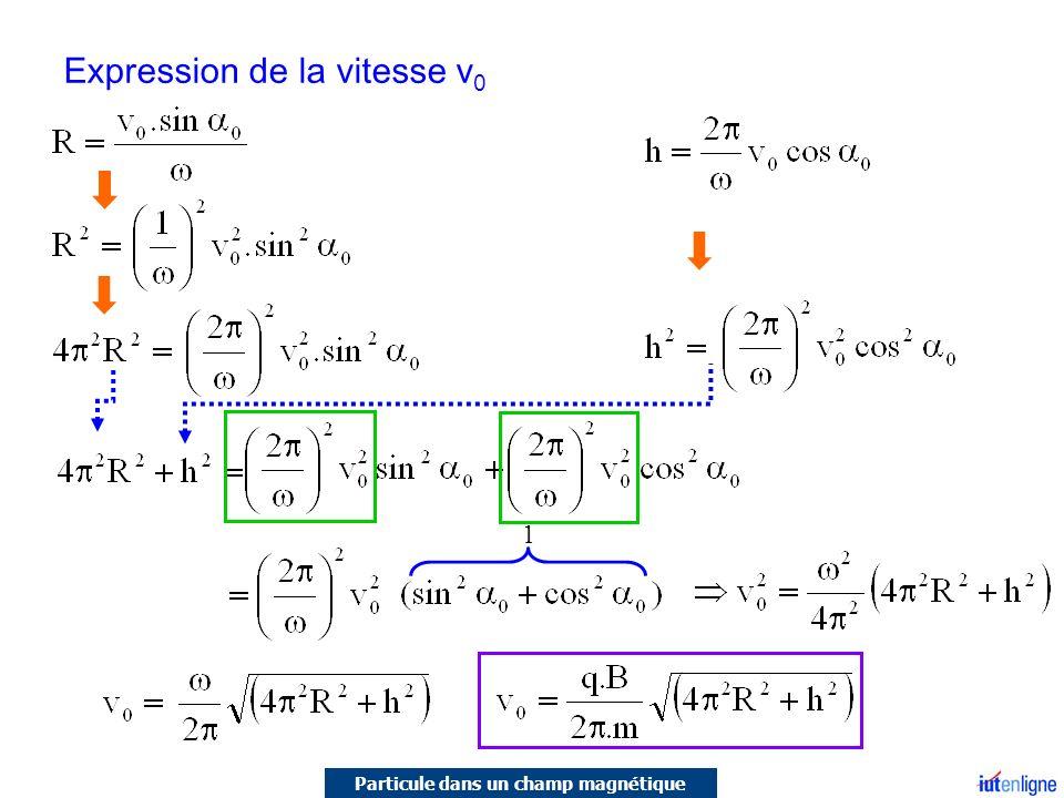 Expression de la vitesse v 0 1 Particule dans un champ magnétique