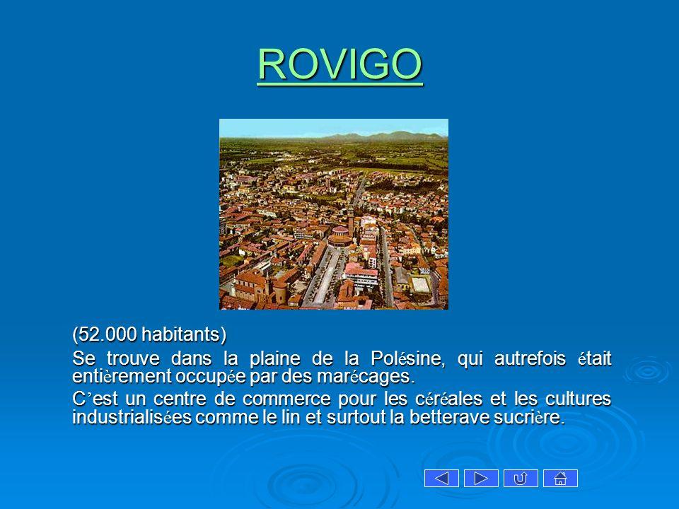 ROVIGO (52.000 habitants) Se trouve dans la plaine de la Pol é sine, qui autrefois é tait enti è rement occup é e par des mar é cages. C est un centre