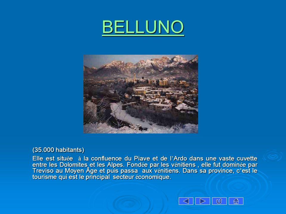 BELLUNO (35.000 habitants) Elle est situ é e à la confluence du Piave et de l Ardo dans une vaste cuvette entre les Dolomites et les Alpes. Fond é e p