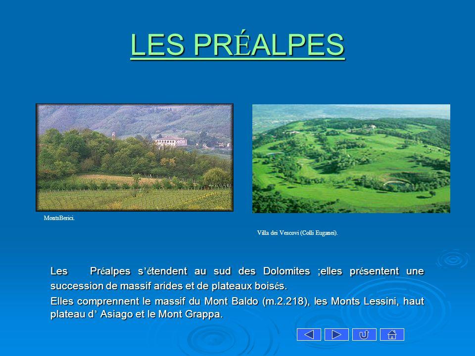 LES PR É ALPES LES PR É ALPES Les Pr é alpes s é tendent au sud des Dolomites ;elles pr é sentent une succession de massif arides et de plateaux bois