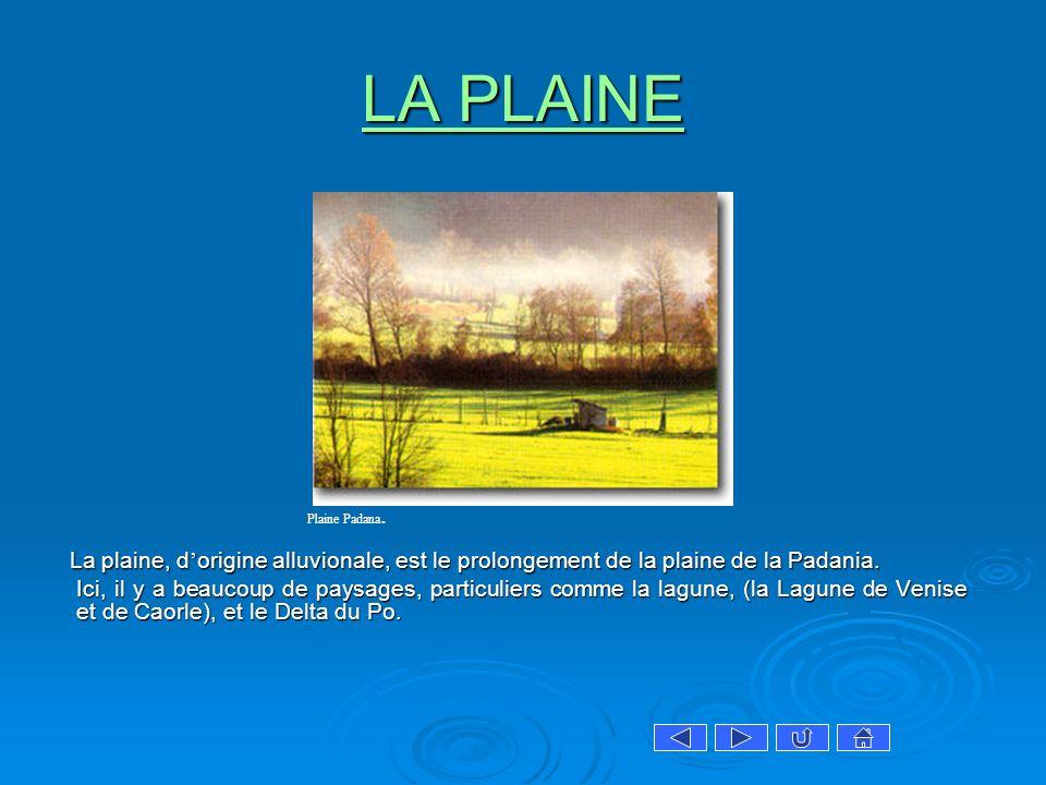 LA PLAINE LA PLAINE La plaine, d origine alluvionale, est le prolongement de la plaine de la Padania. La plaine, d origine alluvionale, est le prolong