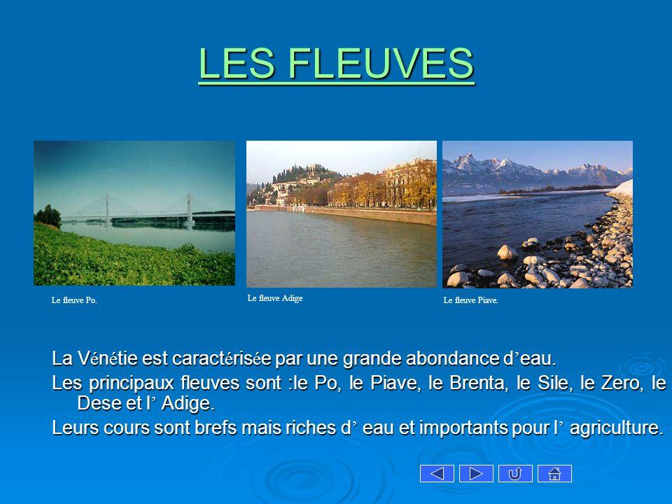 LES FLEUVES LES FLEUVES La V é n é tie est caract é ris é e par une grande abondance d eau. Les principaux fleuves sont :le Po, le Piave, le Brenta, l