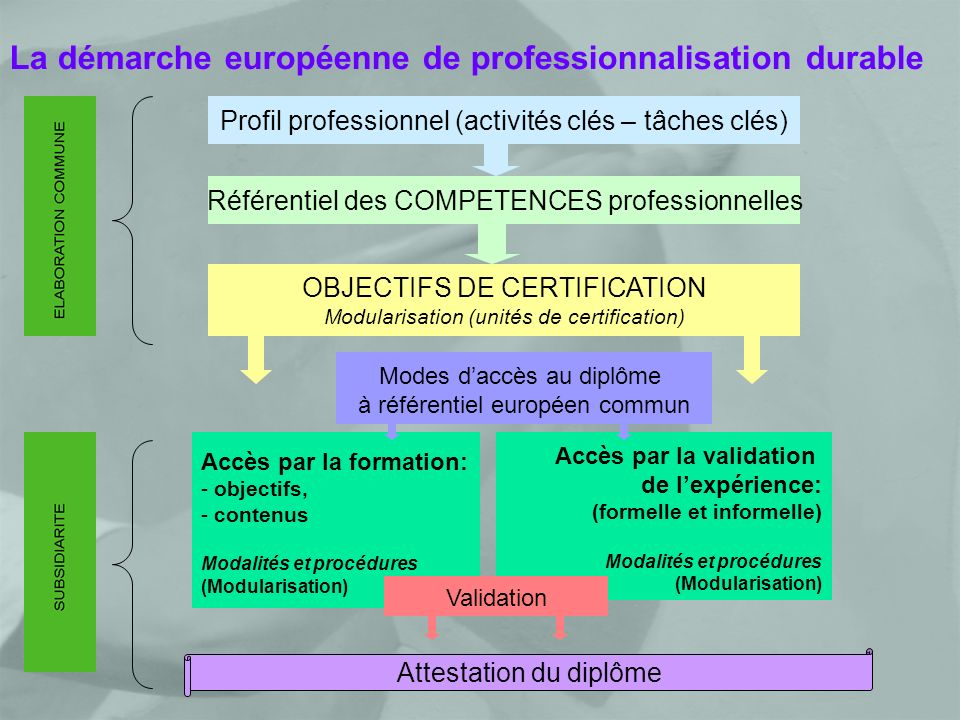 La démarche européenne de professionnalisation durable Profil professionnel (activités clés – tâches clés) Référentiel des COMPETENCES professionnelles OBJECTIFS DE CERTIFICATION Modularisation (unités de certification) Modes daccès au diplôme à référentiel européen commun Accès par la formation: - objectifs, - contenus Modalités et procédures (Modularisation) Accès par la validation de lexpérience: (formelle et informelle) Modalités et procédures (Modularisation) Validation Attestation du diplôme
