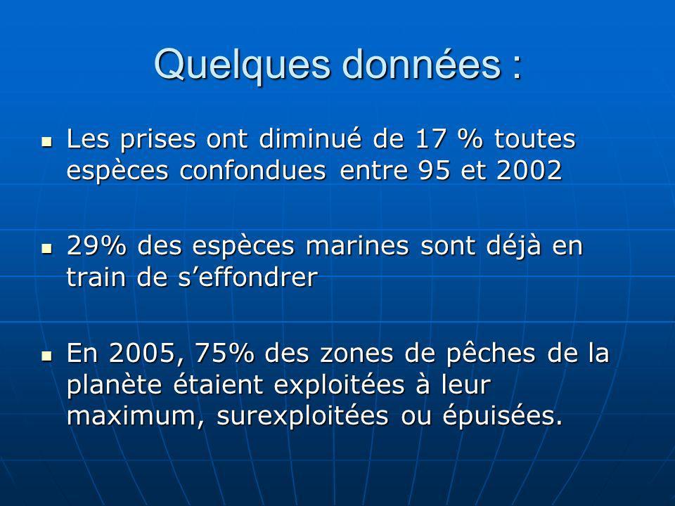 Quelques données : Les prises ont diminué de 17 % toutes espèces confondues entre 95 et 2002 Les prises ont diminué de 17 % toutes espèces confondues