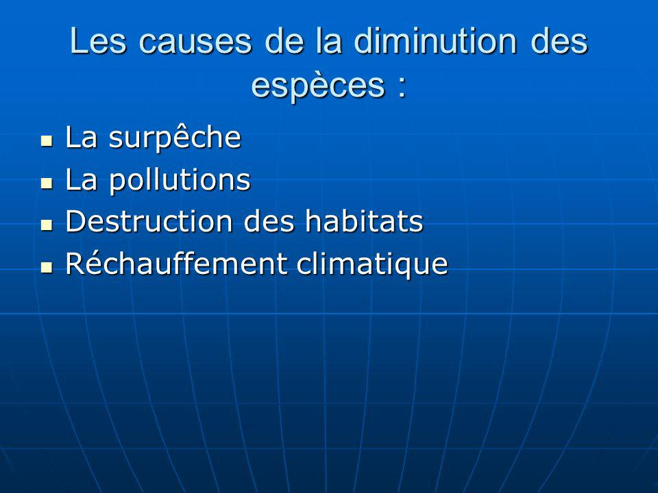 Les causes de la diminution des espèces : La surpêche La surpêche La pollutions La pollutions Destruction des habitats Destruction des habitats Réchau