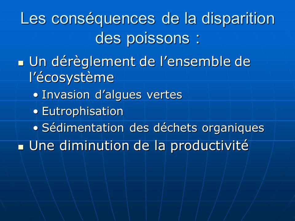 Les conséquences de la disparition des poissons : Un dérèglement de lensemble de lécosystème Un dérèglement de lensemble de lécosystème Invasion dalgu