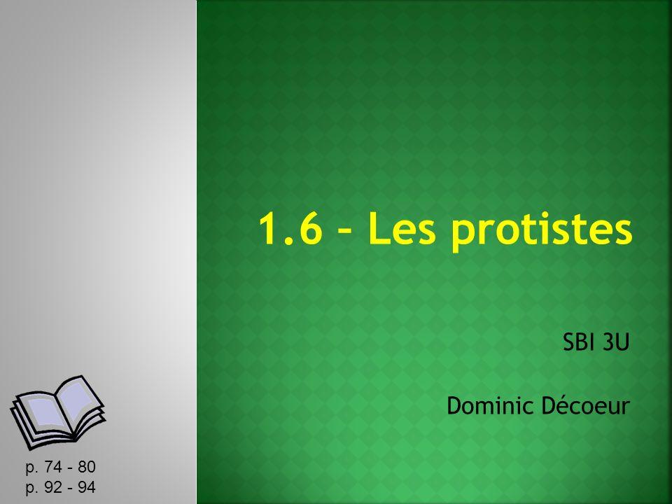 SBI 3U Dominic Décoeur p. 74 - 80 p. 92 - 94