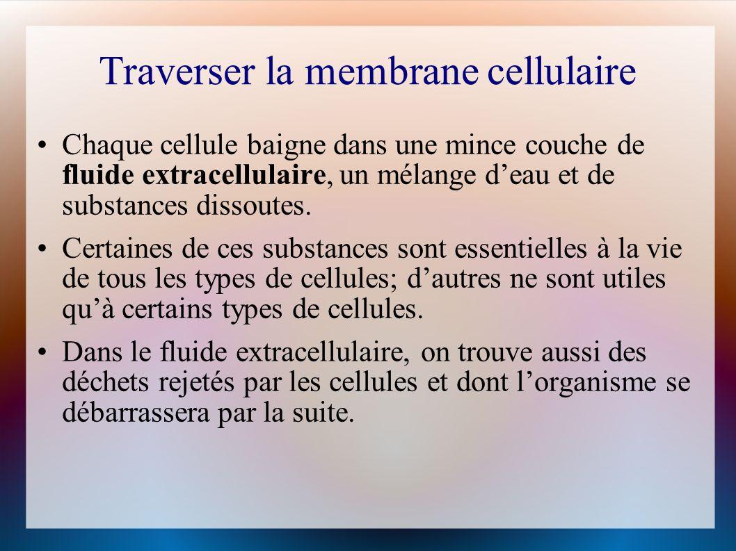 Traverser la membrane cellulaire Chaque cellule baigne dans une mince couche de fluide extracellulaire, un mélange deau et de substances dissoutes.