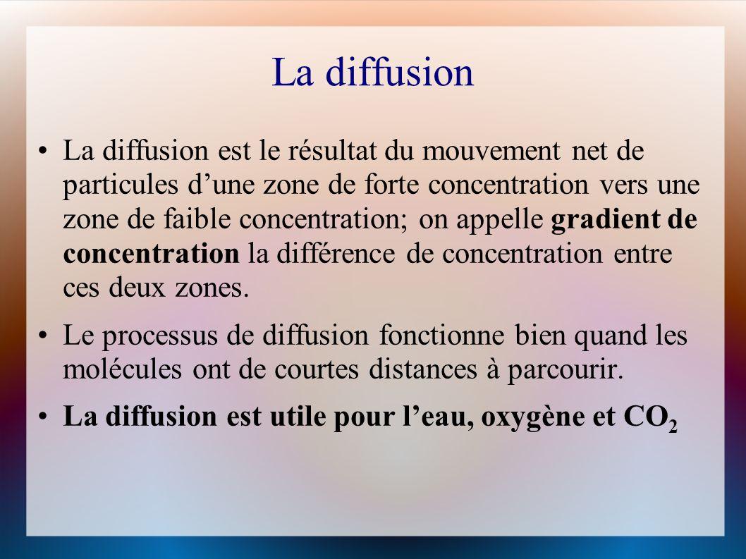 La diffusion La diffusion est le résultat du mouvement net de particules dune zone de forte concentration vers une zone de faible concentration; on appelle gradient de concentration la différence de concentration entre ces deux zones.