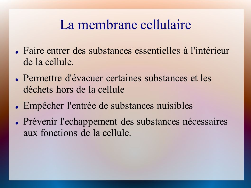 Un potentiel électrique La forte concentration dions positifs à lextérieur de la cellule crée une charge électrique à travers la membrane cellulaire.